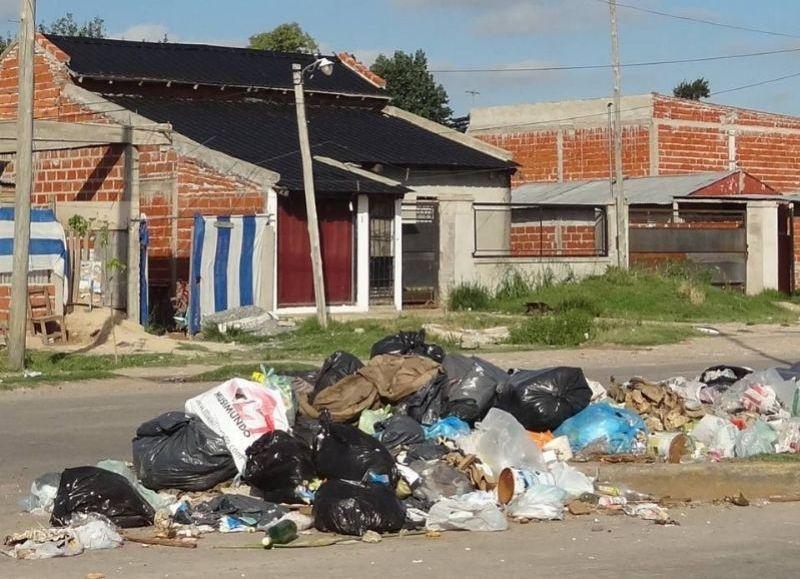 Presentan propuesta para la gestión transparente de los residuos urbanos